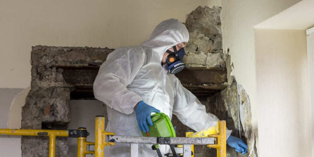 The Importance Of The Asbestos survey